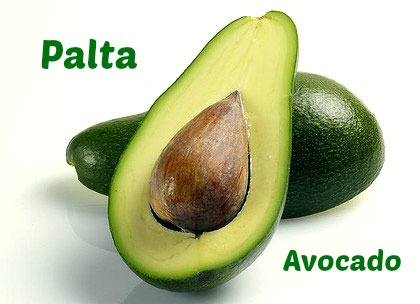 Palta-Avocado